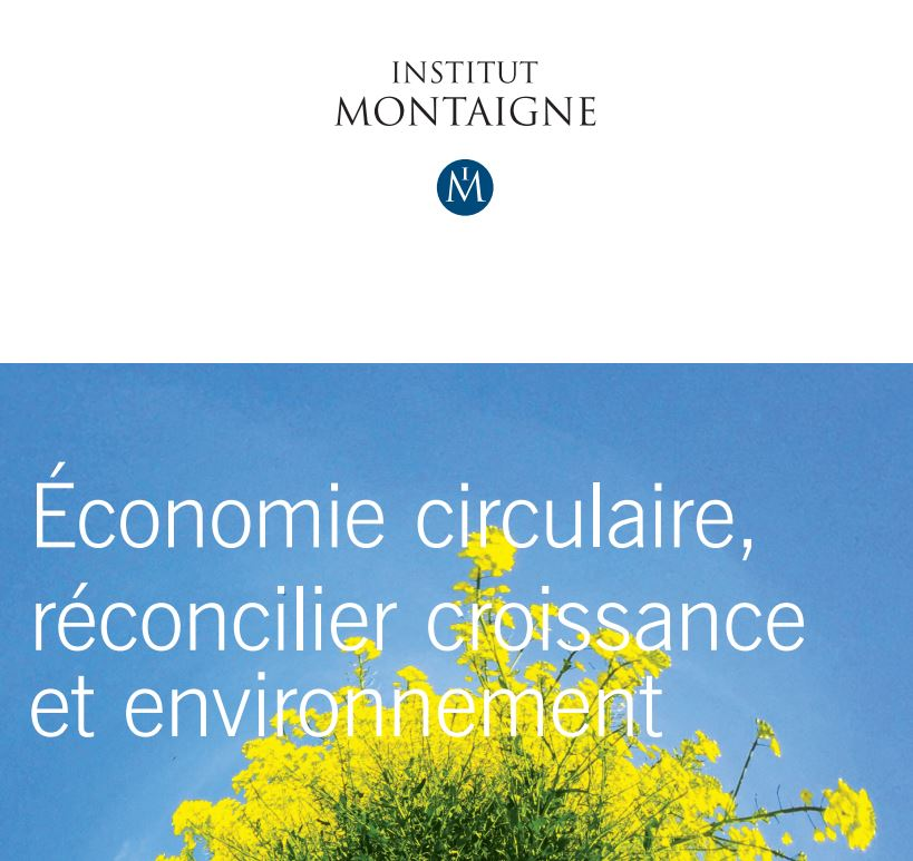 Institut Montaigne 0